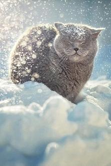 Śnieg w te święta tylko na obrazku :(