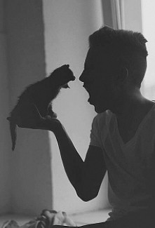 #war#cat#boy#grrr#cute