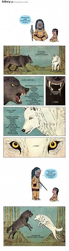 Wygra ten wilk, którego nakarmisz...