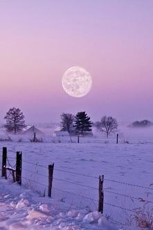 Bajkowa sceneria:), tylko gdzie się podział śnieg:(?
