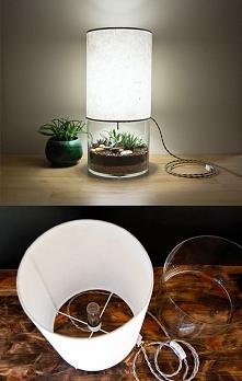 Roślinna lampa