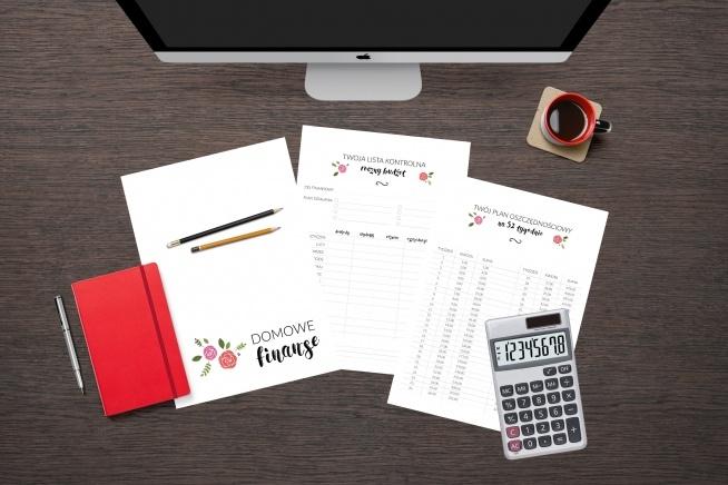 NIEZBĘDNIK FINANSOWY - nowość od Zorganizowana i The Idea Box! 10 stron do wydruku