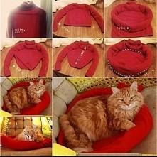 posłanie dla zwierzaka ze starego swetra :)