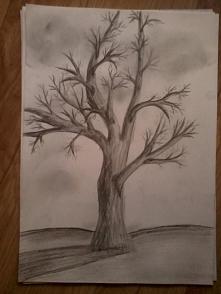 Drzewo :)