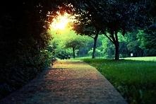Sunny day. weznieprzesadzaj.blogspot.com