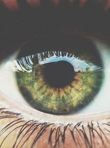 Green eye.