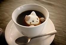 Sweet kitty =^.^=