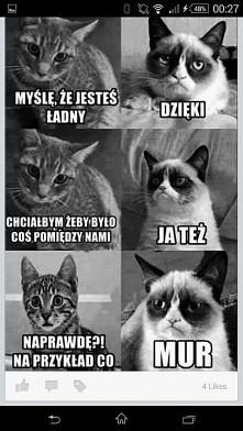 kotełki ☺