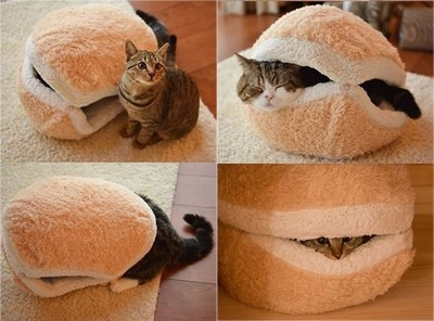 koci hamburger :3