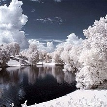 Vigeland Park , Norwegia