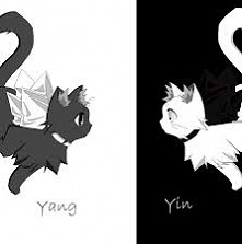 Yin Yang <3