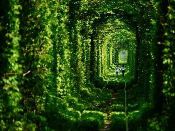 Abandoned Tunnel of Love in Ukraine - 34 Abandoned But Beautiful Places