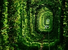 Abandoned Tunnel of Love in...