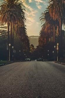 #hollywood #palmy #droga