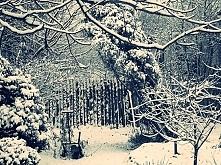 zaczarowany ogród. Zima 2015