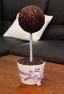 drzewko z kawy :) diy
