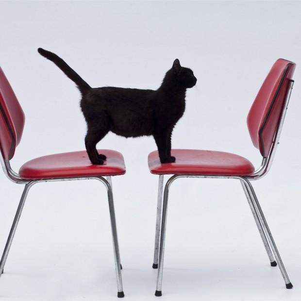 Dwa krzesła w industrialnym stylu
