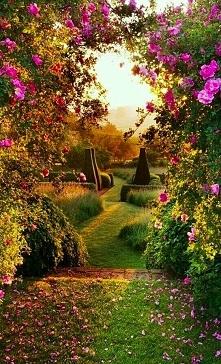 ogród w północnym Oxfordshire, Anglia