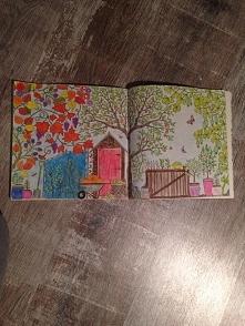 Johanna Basford Tajemny Ogród