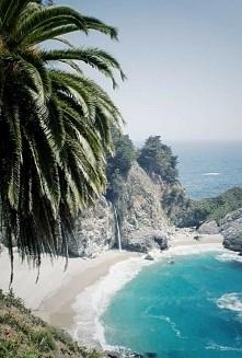 #plaza #beach #morze #palma #piasek #sand #kamienie #rock #zieleń #green #blu...