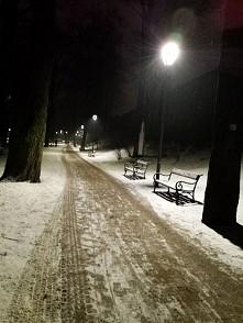 parkowa aleja zimą