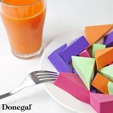 Nowość w sklepie Donegal