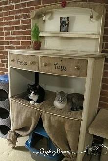 Koci zakątek. Żeby koty chc...