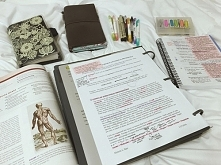 study ^-^