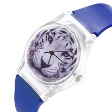 Zegarek Tygrys niebieski