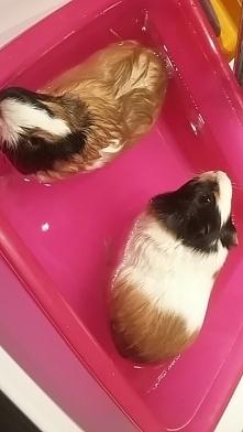 Podczas kąpieli. <3