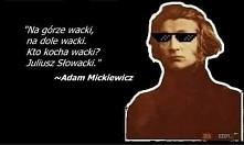 wacki xdd