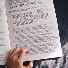 biologia *.*