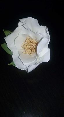 kwiat nr 2