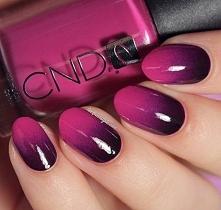 Aby zrobić ombre na paznokciach potrzebne będą kolorowe lakiery( najlepiej minimum dwa tego samego koloru ale różnych odcieni) oraz gąbeczka:) 1.Zanurzyc gąbeczkę wodą,wycisnąć ...