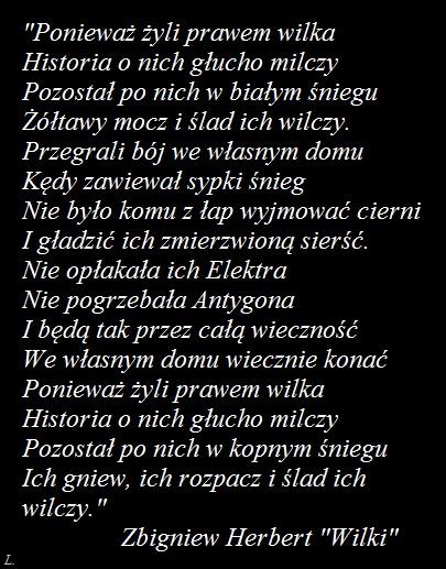 Wilki Zbigniew Herbert Na Wiedza Z Książek Zszywkapl