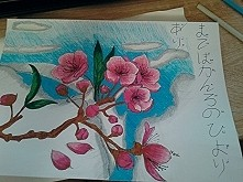 Cherry flowers a4 drawing
