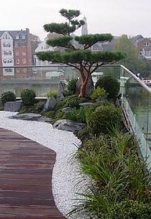 skalny ogród