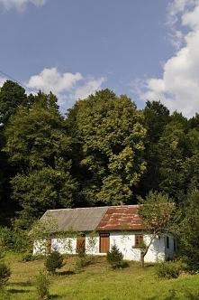 Sielski obrazek drewnianej chatki położonej na skraju lasu - zobacz niezwykły...