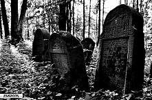 Cmentarz żydowski czyli kir...