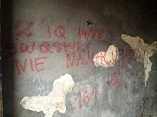 Niskie IQ - graffiti Wrocław
