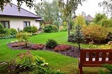 Tak tu cudnie... :) blog Ogród w Cieniu Brzóz. A u mnie na razie ściernisko i puste pole, nie licząc kilku drzewek (nawet nie- owocowych)...