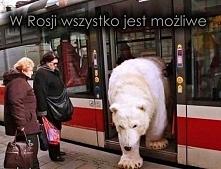 Rosja na wesoło