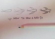 Jak narysować ptaka ? :)