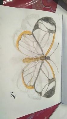Motylek [greta oto-motyl sz...