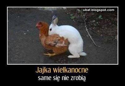 Jajka wielkanocne już w drodze :P