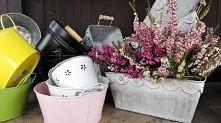 Wiosenne wrzośce w romantycznej aranżacji. Osłonki i koszyczki także dostępne...