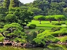 łał... piękny ogród.
