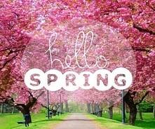 Hello Spring! :)