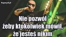 Słoń - Szczerze