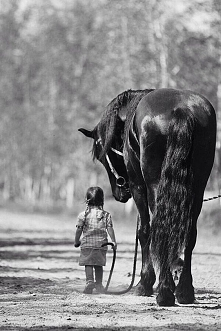 Piękne zdjęcie. Miłość i zaufanie, uwielbiam :)